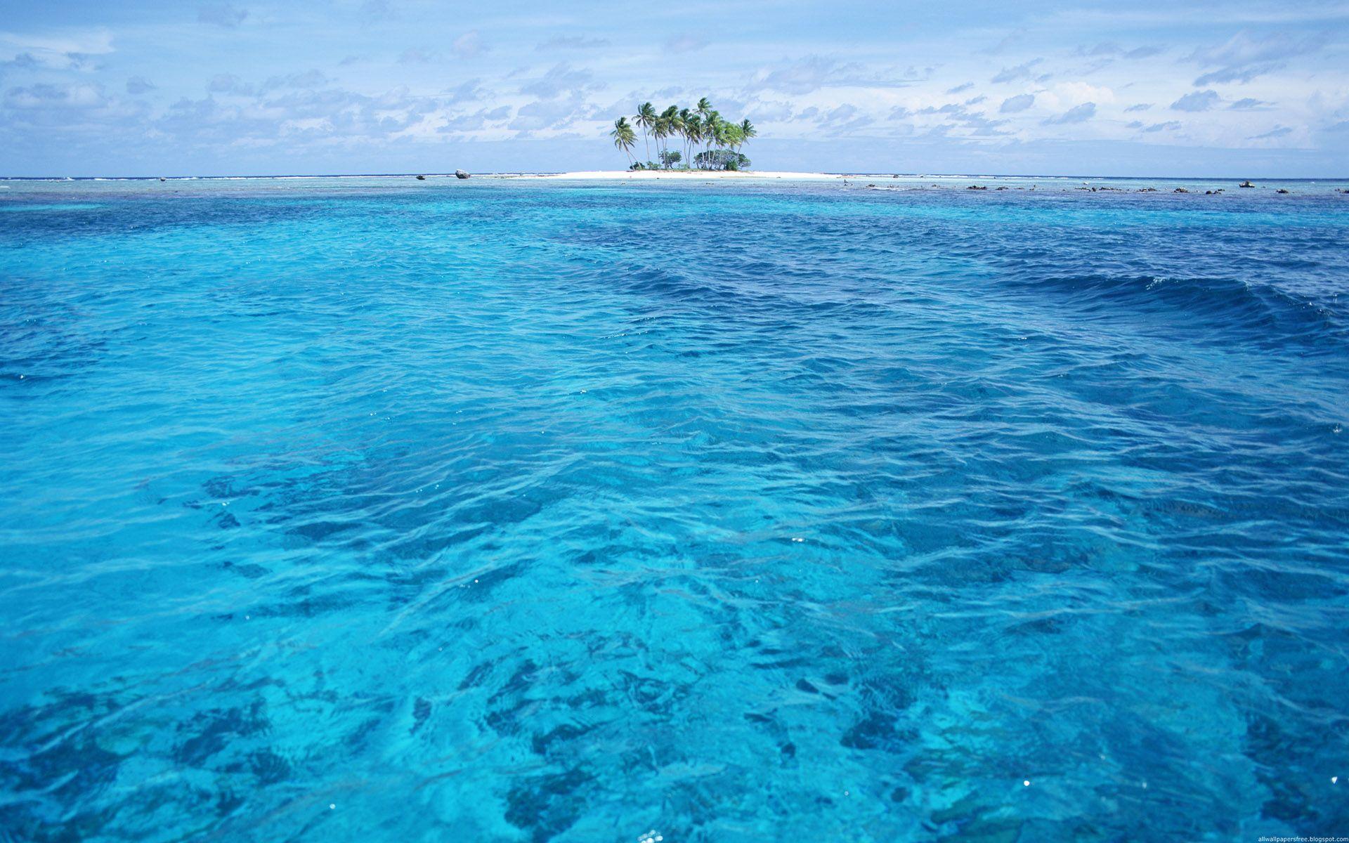 海洋世界动态桌面壁纸壁纸图片风景壁纸风景图