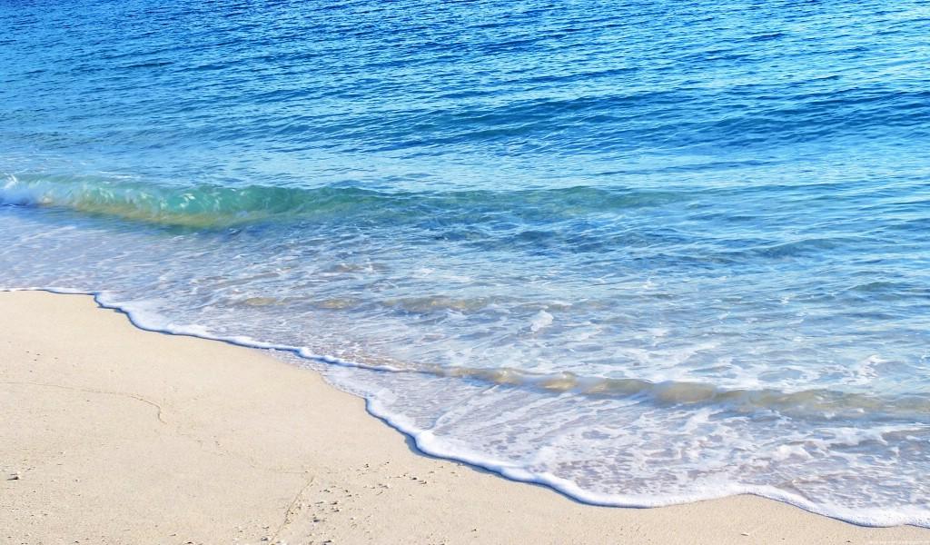 海洋世界动态桌面壁纸壁纸海洋世界动态桌面壁纸