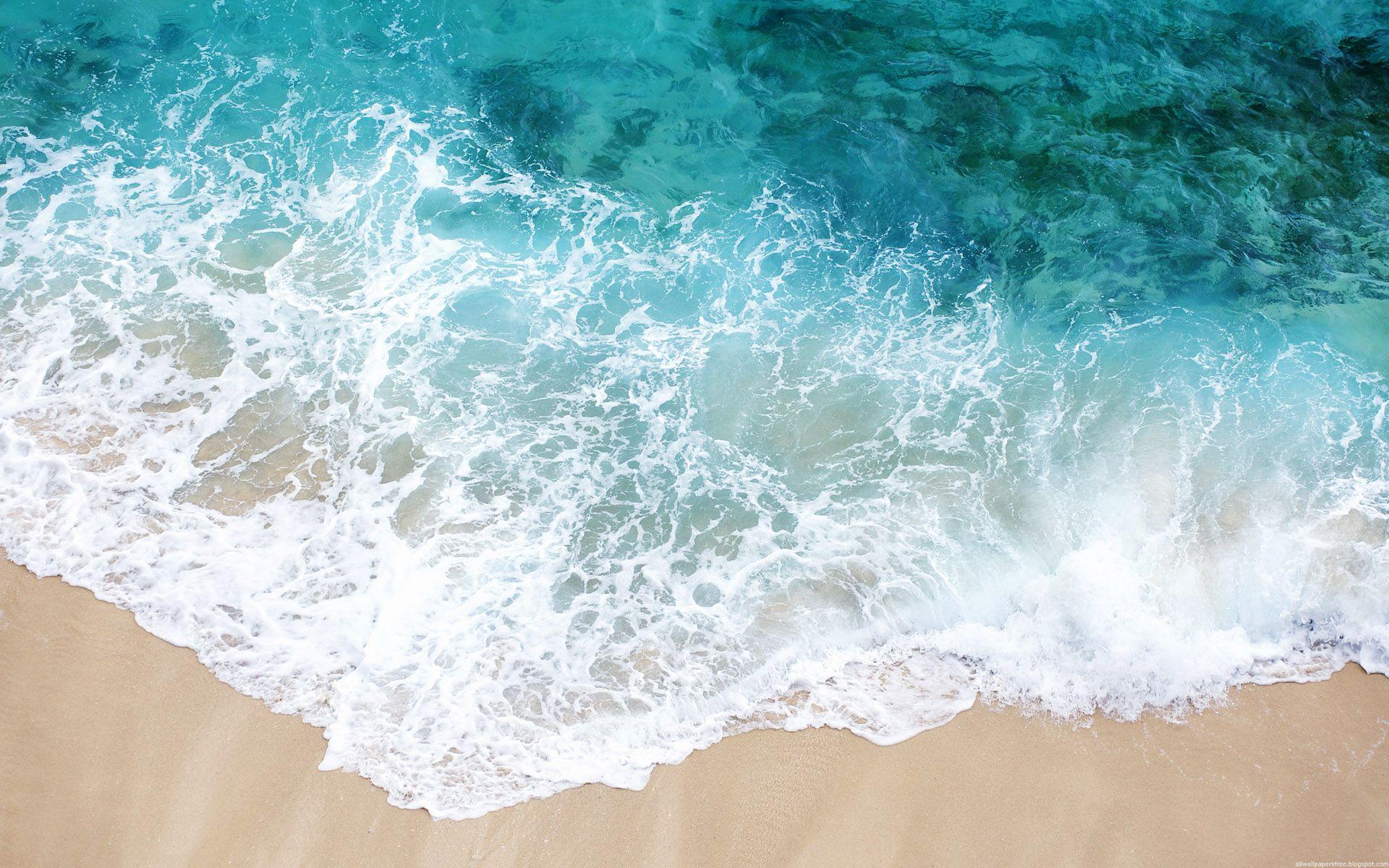 壁纸1920×1200海洋世界动态桌面壁纸壁纸