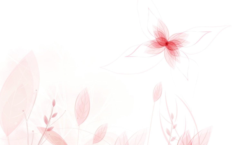 壁纸1440×900色彩花朵花纹宽屏壁纸壁纸